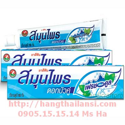 kem-đánh-răng-thảo-dược-twin-lotus-fresh—thái-lan-_320x320